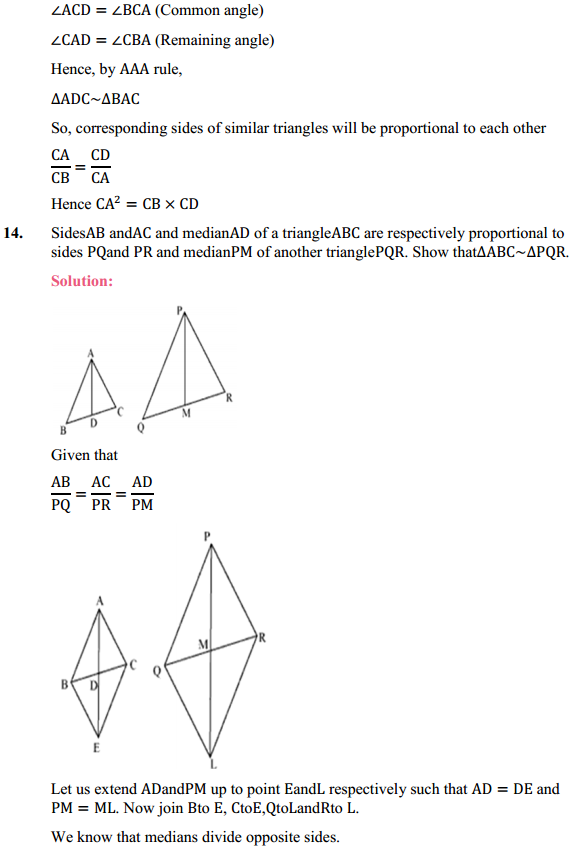 NCERT Solutions for Class 10 Maths Chapter 6 Triangles Ex 6.3 13