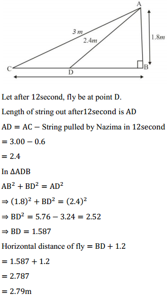 NCERT Solutions for Class 10 Maths Chapter 6 Triangles Ex 6.6 13