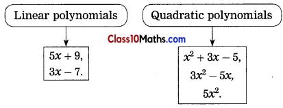 Quadratic Equations Notes 1