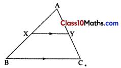 Similarity Notes 18