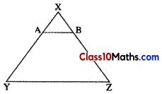 Similarity Notes 19